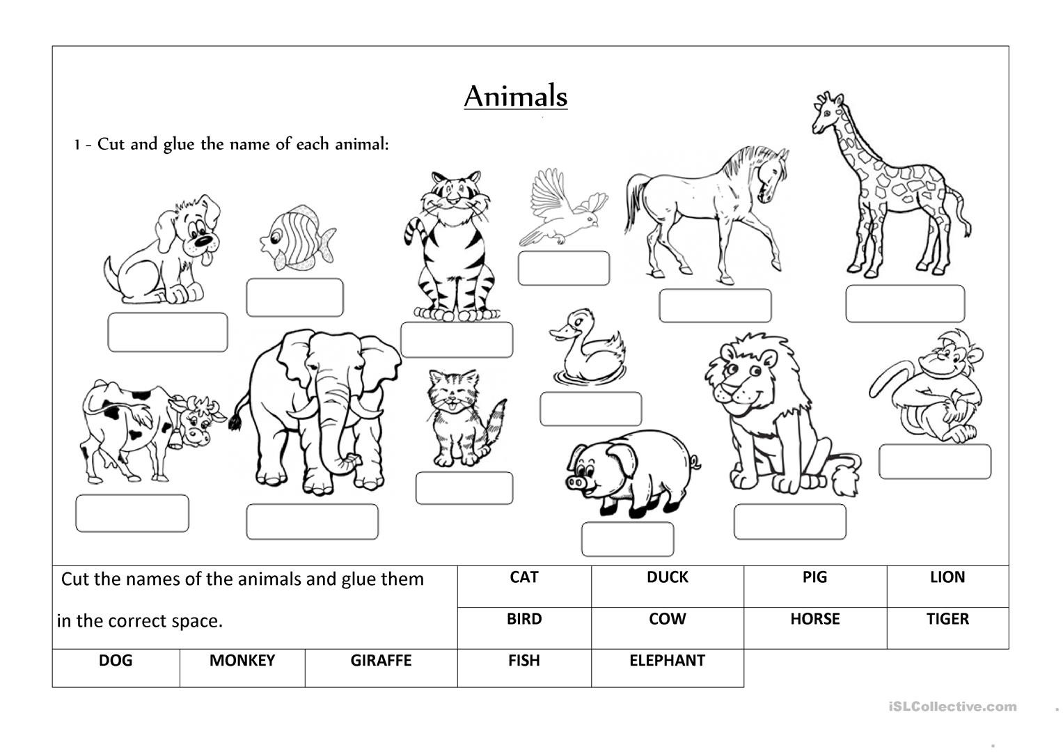 Animals label and classify English ESL Worksheets for