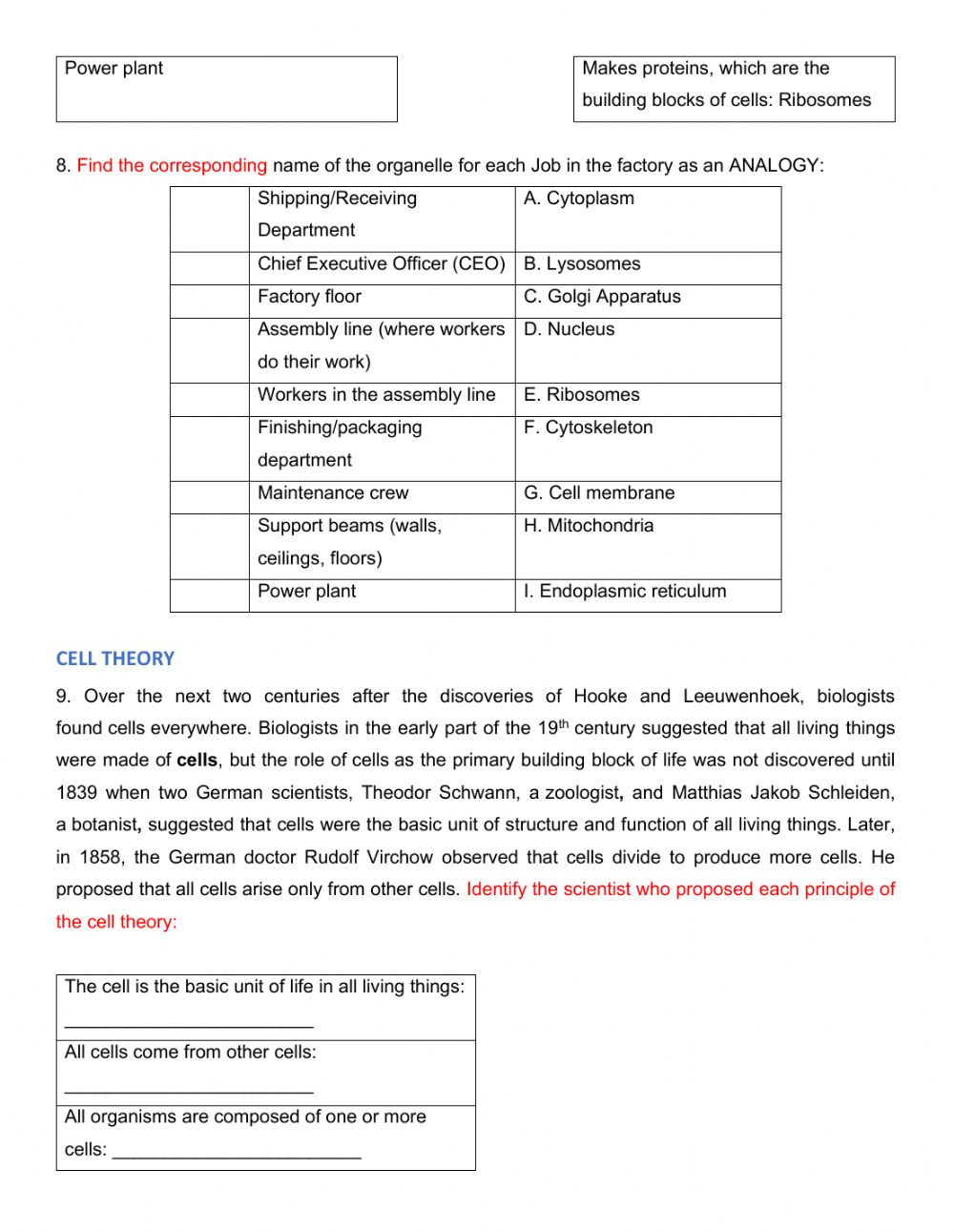 Cell theory Worksheet 7th Grade