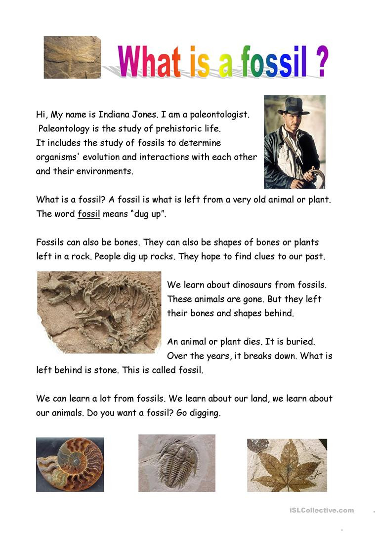 What is a fossil English ESL Worksheets for distance