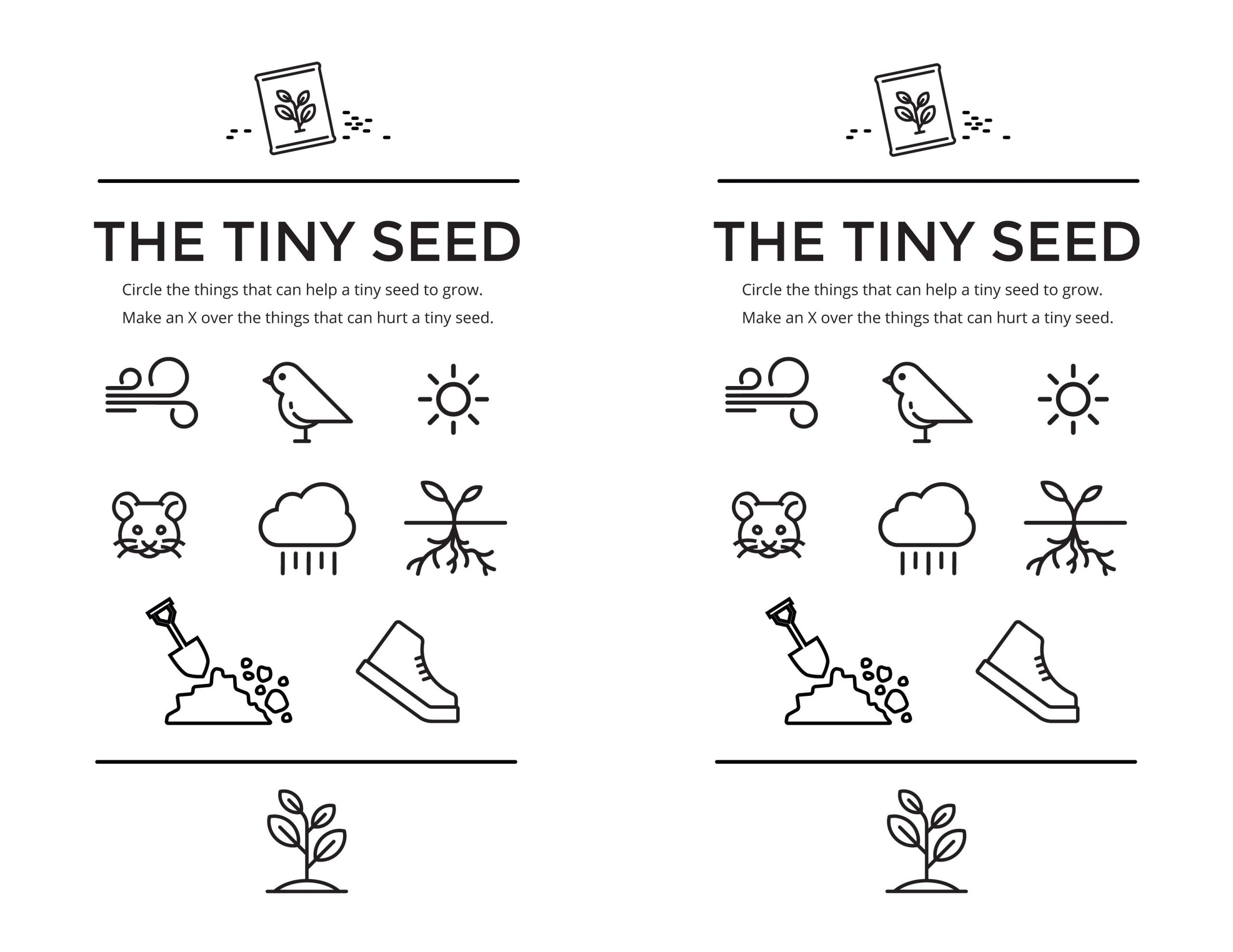 The Tiny Seed – The Gospel Home